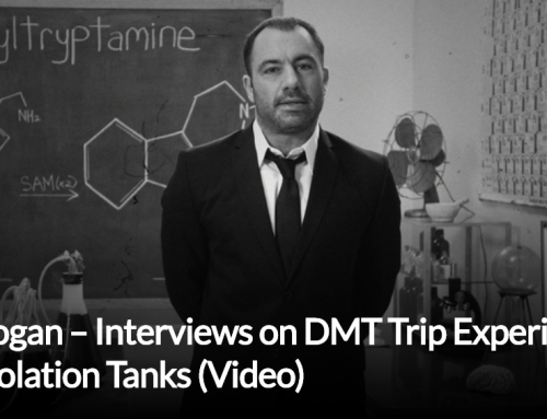 Joe Rogan – Interviews on DMT Trip Experiences and Isolation Tanks (Video)